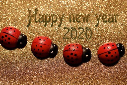 Happy New Year – Die ersten Anmeldungen für die Hammerball-SM sind bereits eingetroffen